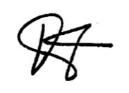 Signature Large copy